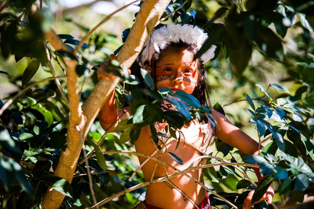 3 Livros Para Apresentar A Cultura Indígena Aos Pequenos