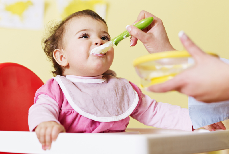 Nutrientes Para O Cérebro Do Bebe