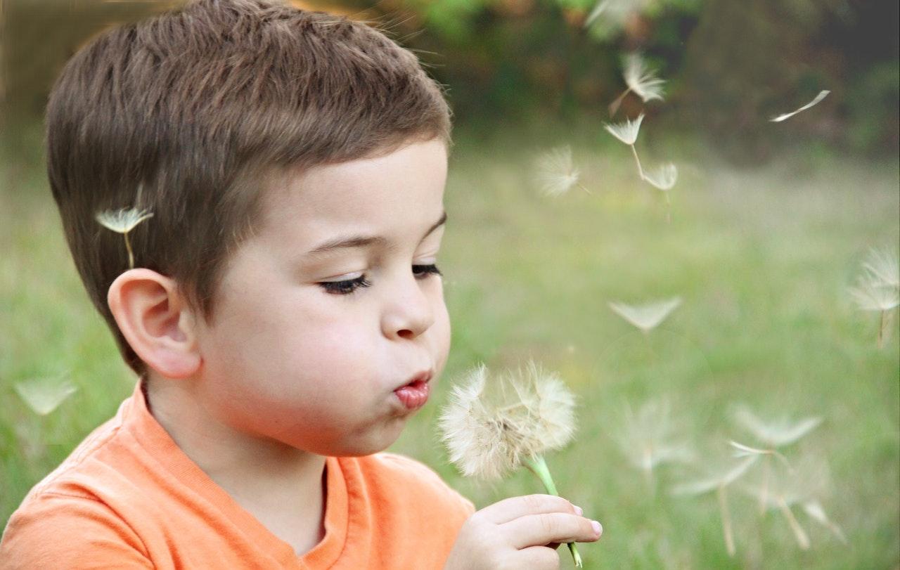 Transtorno Do Espectro Autista: Conheça Cinco Livros Infantis Sobre Autismo