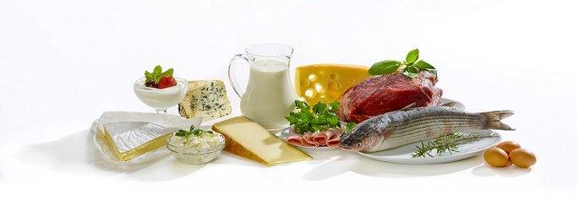 Consumo De Proteínas Na Gestação