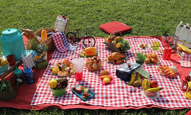 Piquenique-comida-onde-fazer-15-e1469030982182