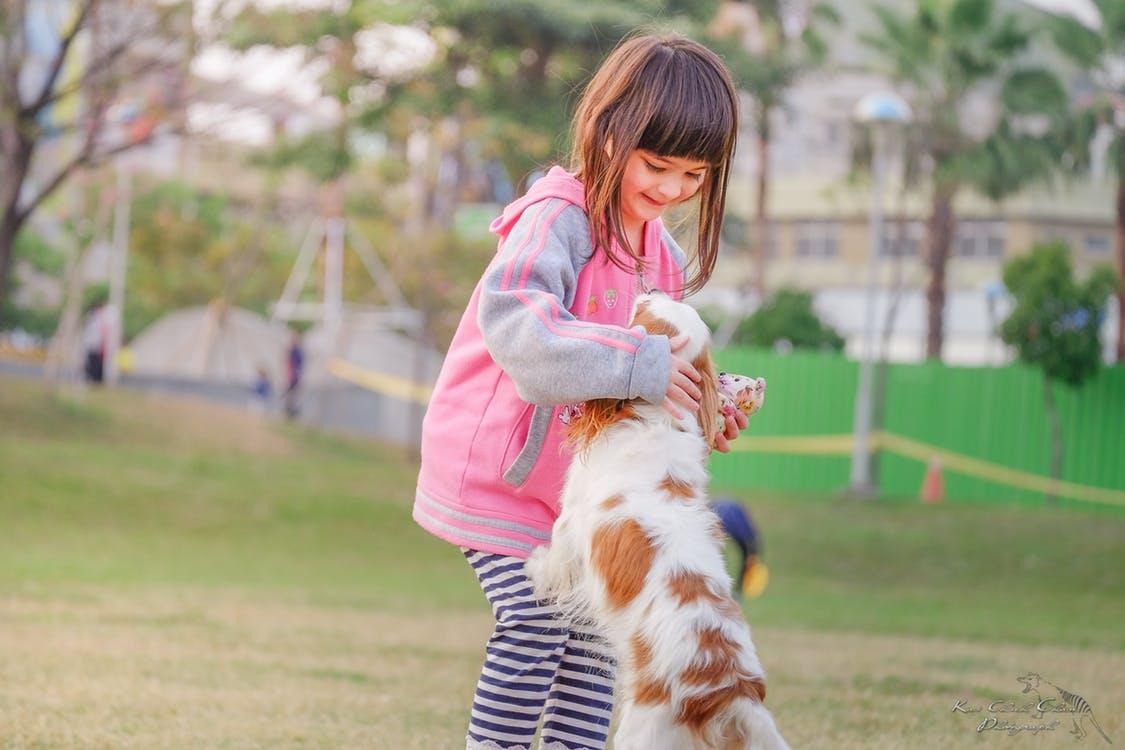 Qual Animal De Estimação é Ideal Para Meus Filhos?
