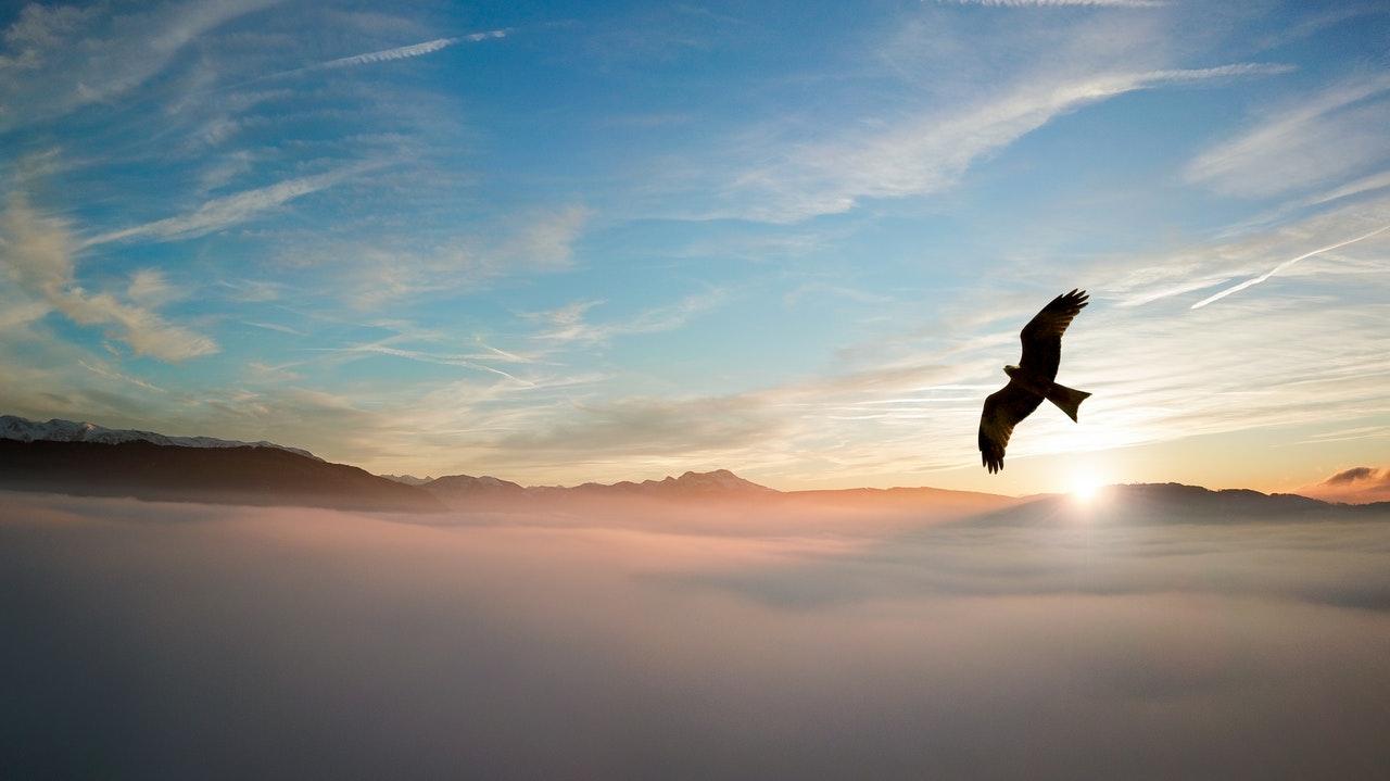 Lindos Dias De Sol Para Espantar A Tristeza Da Reclusão – Dia 25