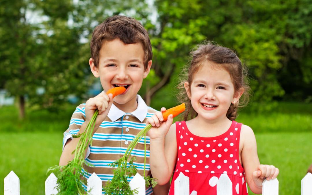Alimentos Orgânicos São Mais Ricos Em Nutrientes